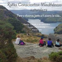 Mindfulness en la Naturaleza