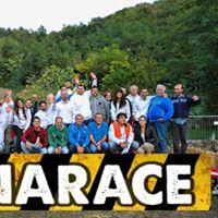 Linarace 2017