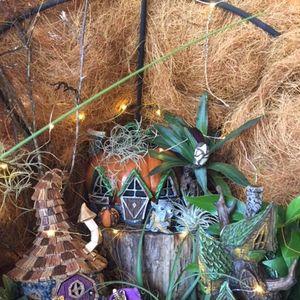 Lighted Fairy Garden Workshop