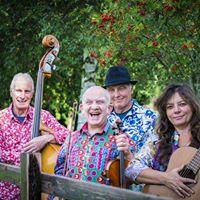 FiddleBop at Daylesford Summer Festival
