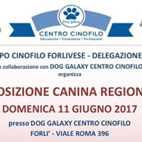 Esposizione Canina Regionale