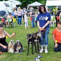 Gosportarians Charity Dog Show May 27th 2017