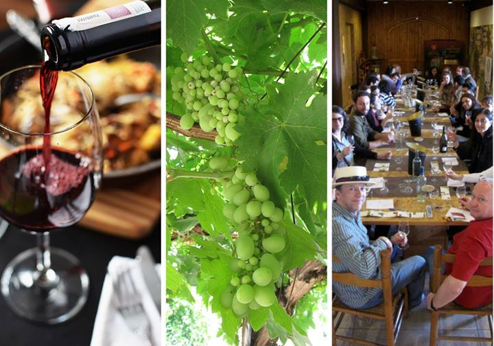 Beqaa Wine Tour and Tasting with Lunch