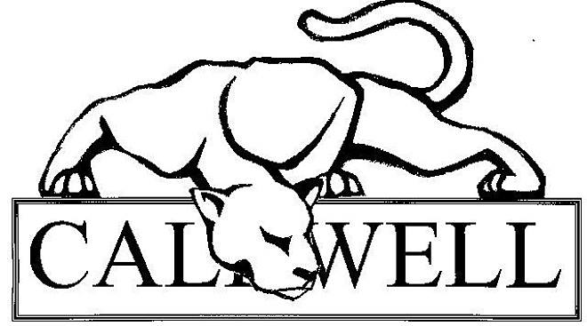 Image result for caldwell high school