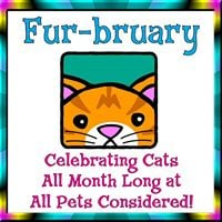 Fur-bruary &quotThe Month of the Cat&quot