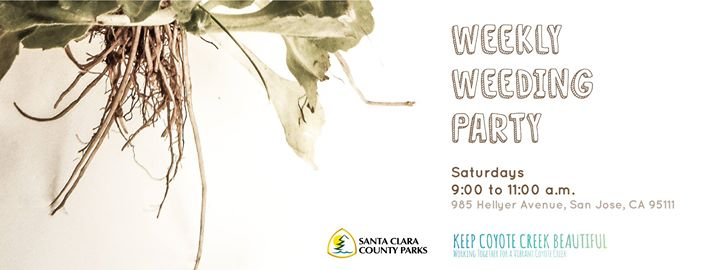 Hellyer Park Weeding Party