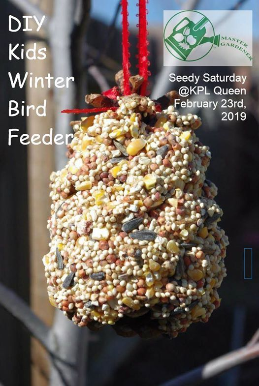 DIY Kids- Winter Bird Feeder (Peanut Free)