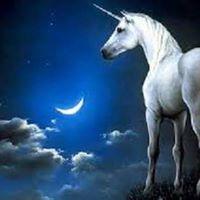Unicorn Healing System