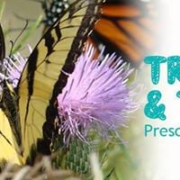 Trails &amp Tales Wednesday Class Series