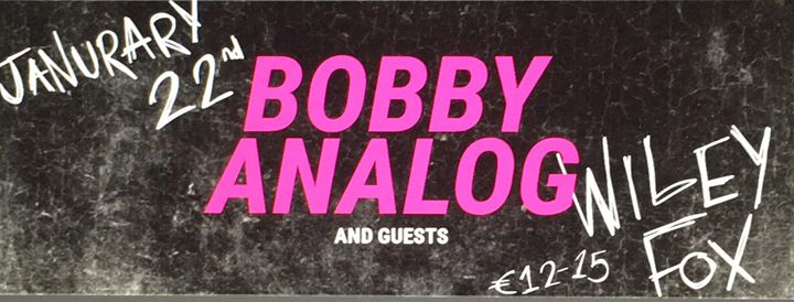 Bobby Analog & Guests at The Wiley Fox