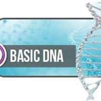 ThetaHealing Basic DNA Practitioner Seminar