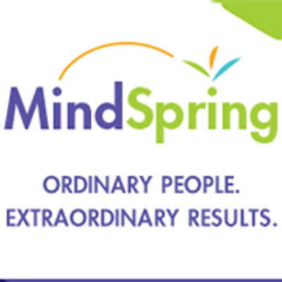 MindSpring Consulting, Inc.