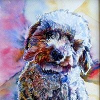 Pets and Animals in Watercolor with Kevin Kuhne