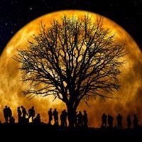 Full Moon Labyrinth Walk