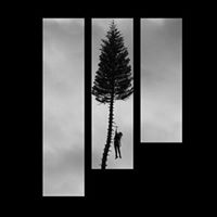 Manchester Orchestra A Black Mile To The Surface Listening Party