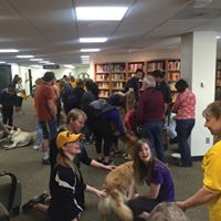 Therapy Dogs At The Library