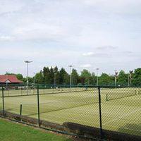 Tennis Breaks tennis social and picnic