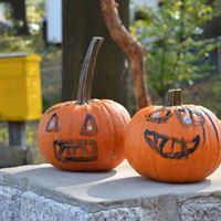 Halloween at the Garden