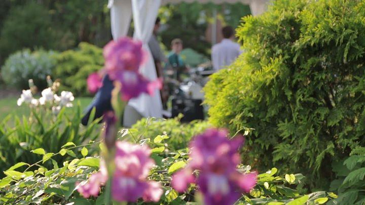 UT Gardens Gala: Thyme to Grow | Knoxville