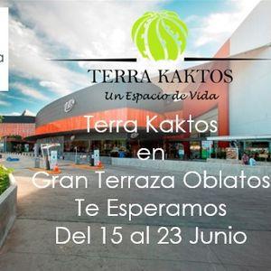 Terra Kaktos Exhibitions Events In Zapopan Get Tickets