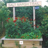 Cycle the Salt Marsh Trail