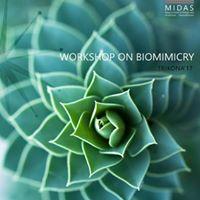 Biomimicry Workshop  Trikona