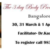 The 3 Day Body Process Workshop