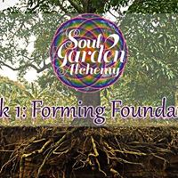 Soul Garden Alchemy  Week 1  Forming Foundations