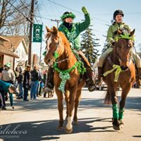 Horses In Wallkill St. Patricks Day Parade