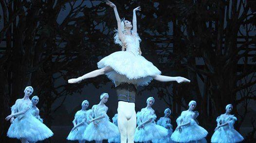 Staatl. Russisches Ballett - Schwanensee - Stuttgart (VVK)