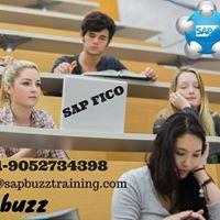 Sap Fico Online Training in India