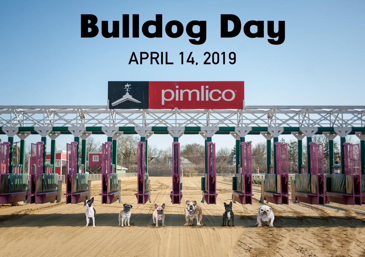 Bulldog Day 2019