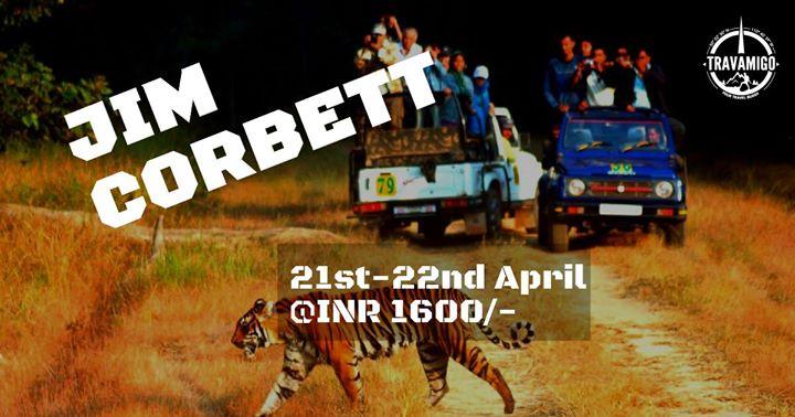 Jim Corbett Weekend Getaway - INR 1600 Only