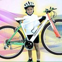 Varads Cycling Record