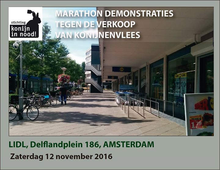 Demonstratie marathon in amsterdam at lidl hemonylaan for Demonstratie amsterdam