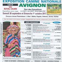 Exposition Canine Davignon -CACS