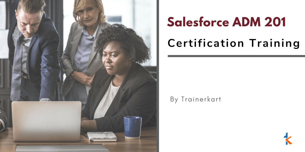 Salesforce Admin 201 Certification Classroom Training in Chicago IL