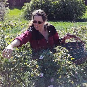 Betydelsen av rter och blommor i vra trdgrdar - frelsning