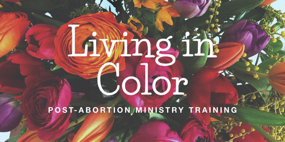 Living In Color Post-Abortion Facilitator Training 2019