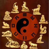 A practical evening of Feng Shui with Sally Claxton