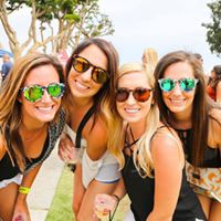 Hollywood Beer and Music Fest