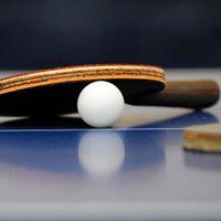7 Open de Tennis Taula dArbcies