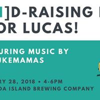 Ukemamas fundraiser for Lucas