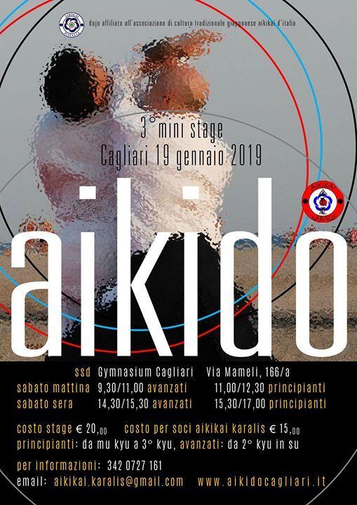 3 Mini Stage di Aikido