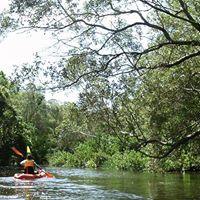 Tingalpa Creek Dam Wall Kayak