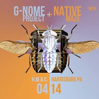 G-Nome Project w Native Maze at HMAC - Harrisburg PA 414