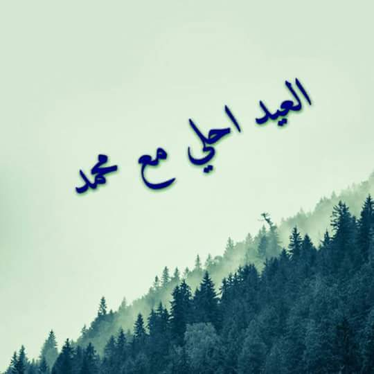 عيد ميلاد حبيبي محمد At 6 October City Egypt 6 October City