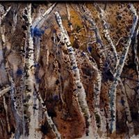 Birch Trees in Fall with Kevin Kuhne