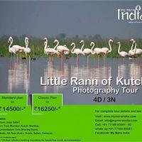 Little Rann of Kutch (LRK) Photography Tour on 19-22Jan 2017