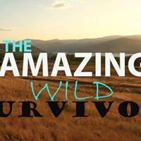 Amazing Wild Survivor Night